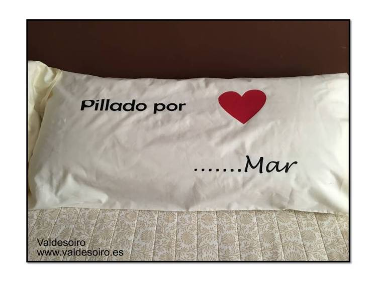 almohada con vinilo